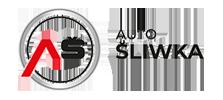 Skoda logo Autośliwka